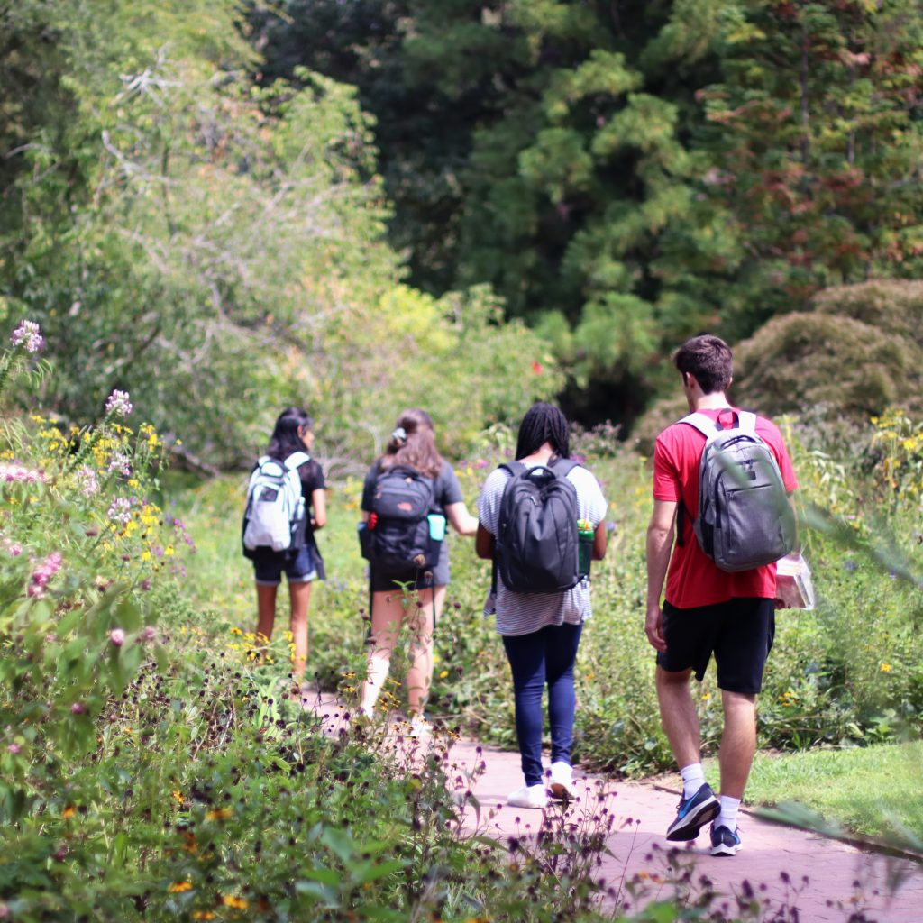 ENGL 105i Natural Sciences in Coker Arboretum, photo taken by Heidi Hannoush